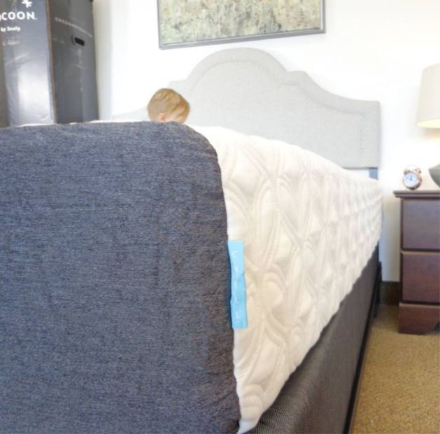 Cocoon Chill by Sealy mattress