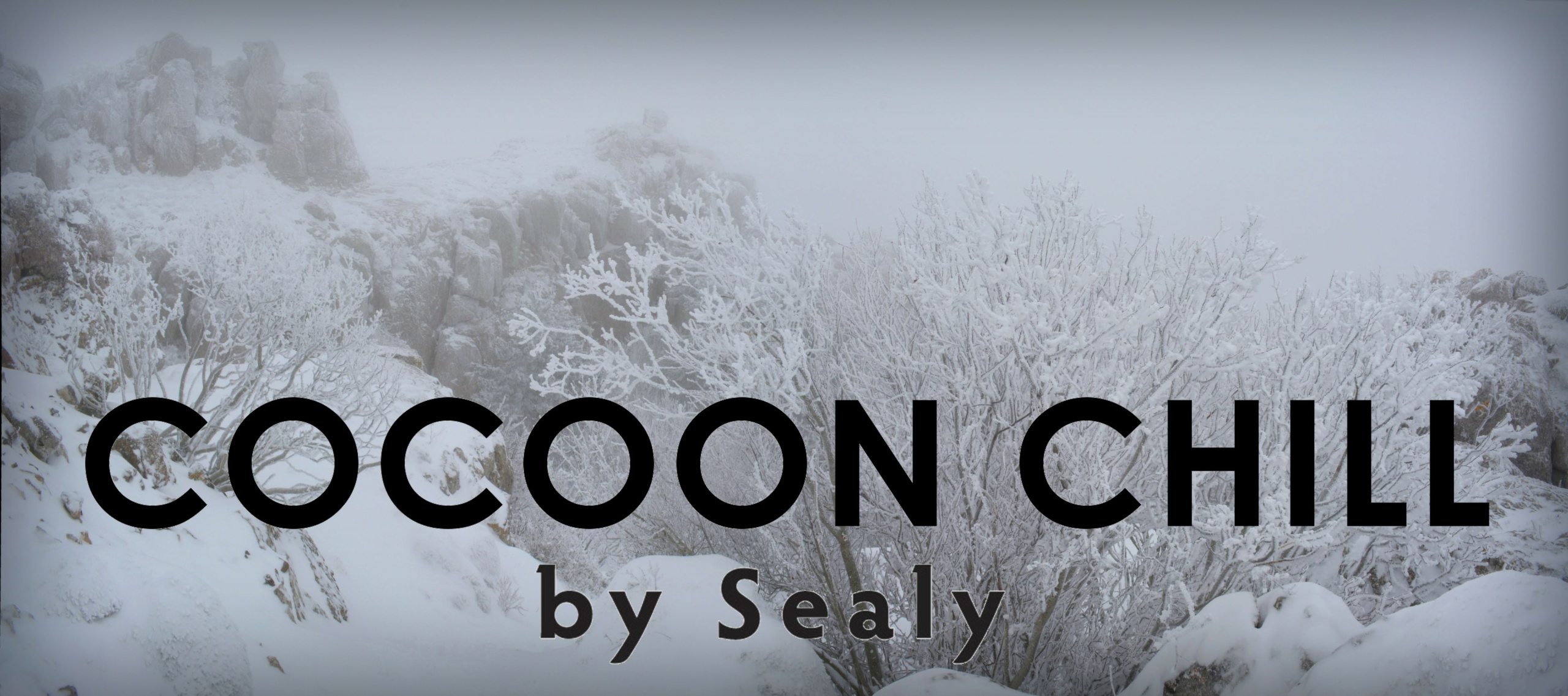 cocoon chill by sealy