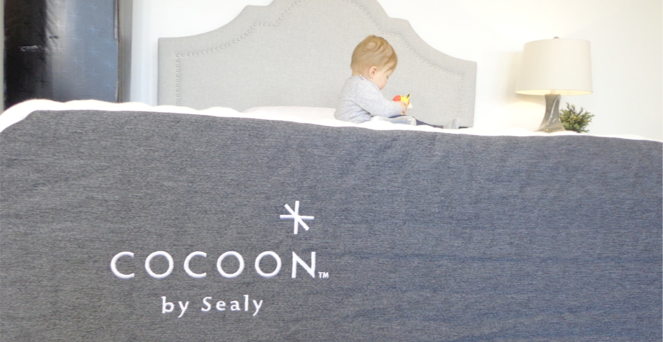 cocoon by sealy mattress