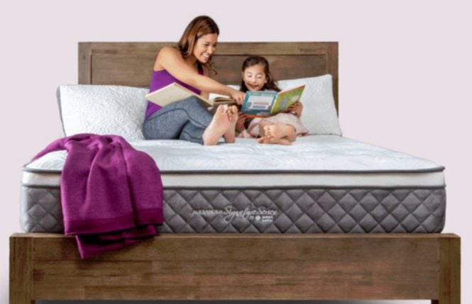 alexander signature series mattress review
