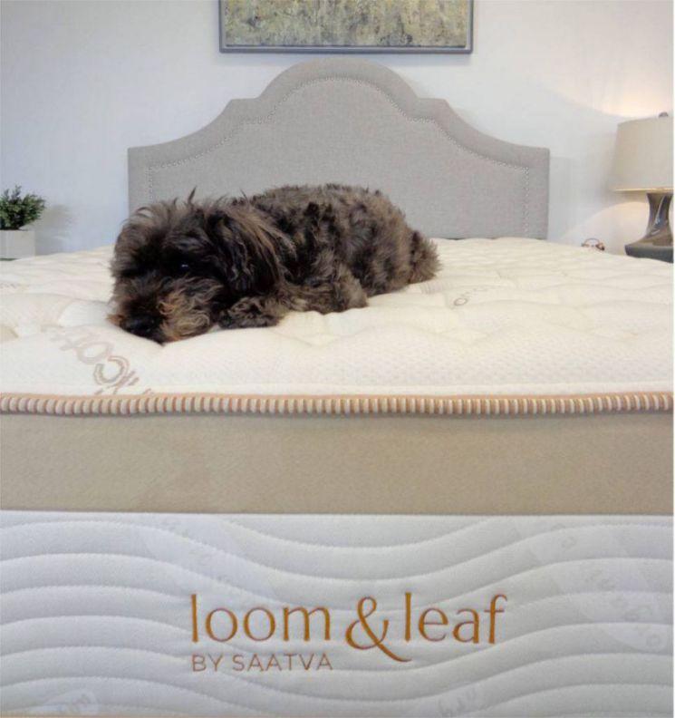 loom-and-leaf-image-3