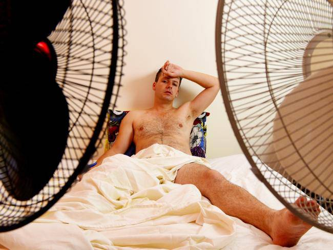 fans near the bed