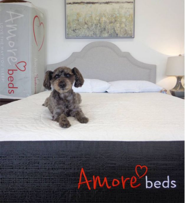amore beds mattress review