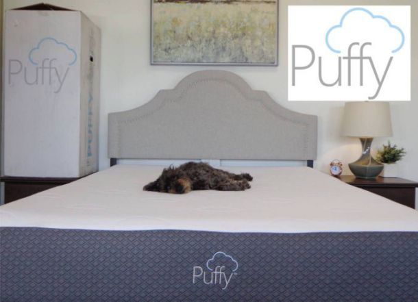 cocoon vs puffy