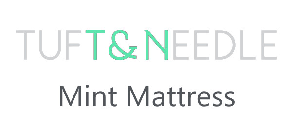 T&N mint logo