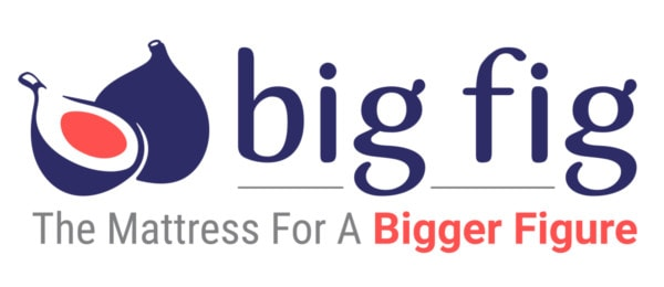big fig mattress review