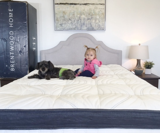 baby and dog on a mattress