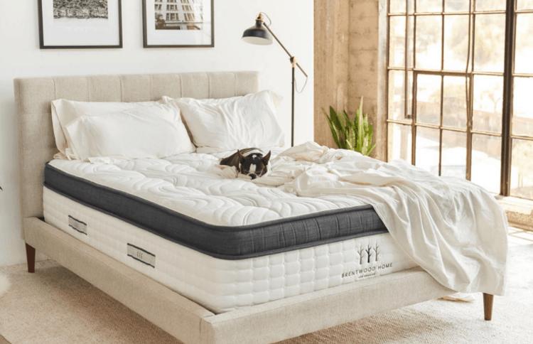 oceano mattress review