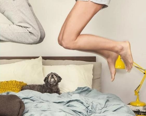 motion transfer mattress review