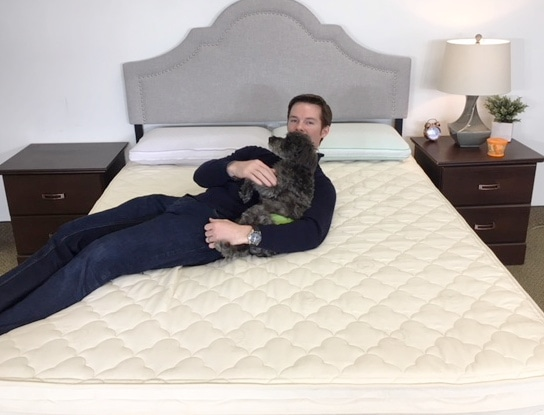 metta bed mattress review