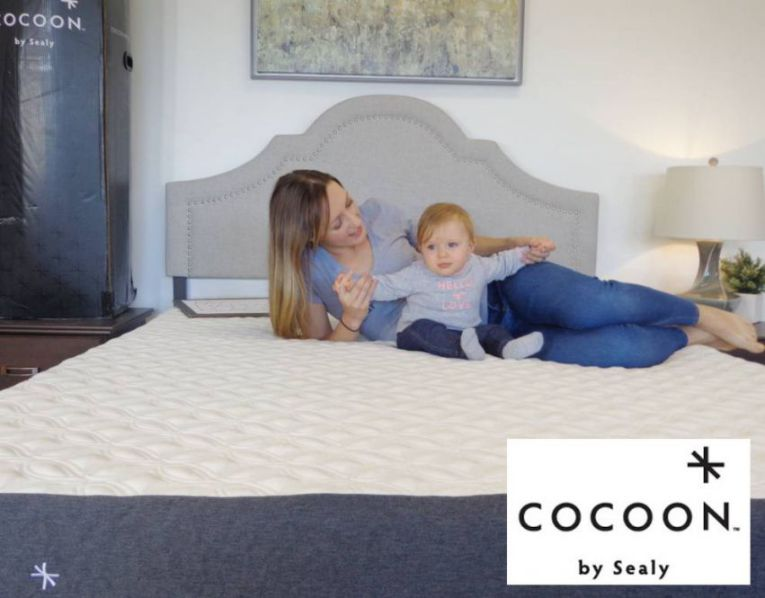 cocoon mattress by sealy compared