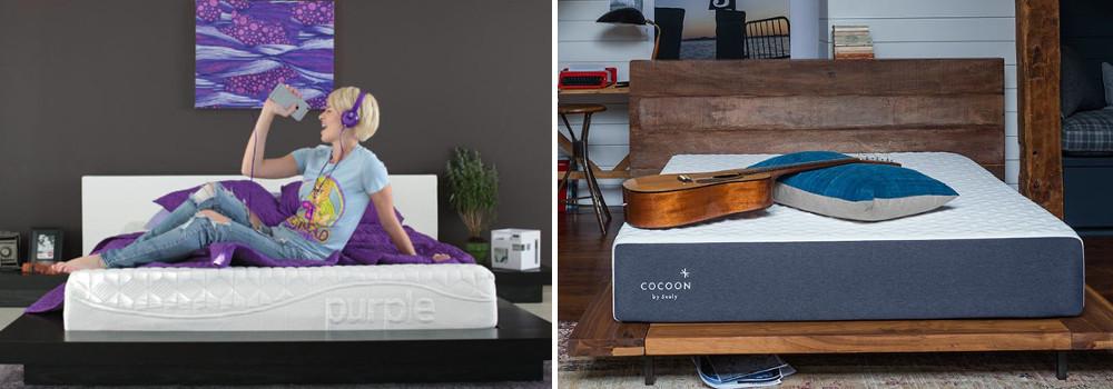 purple vs cocoon