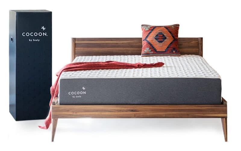 cocoon mattress winner overall better buy
