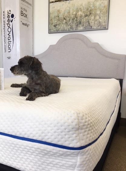 sleepovation mattress