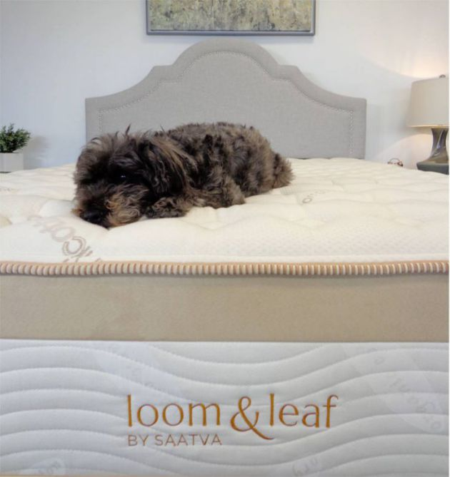 puffy lux vs loom & leaf mattress