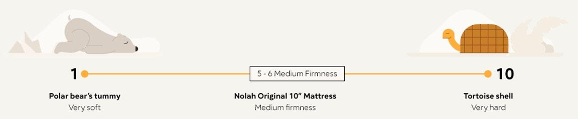 nolah original vs nolah signature