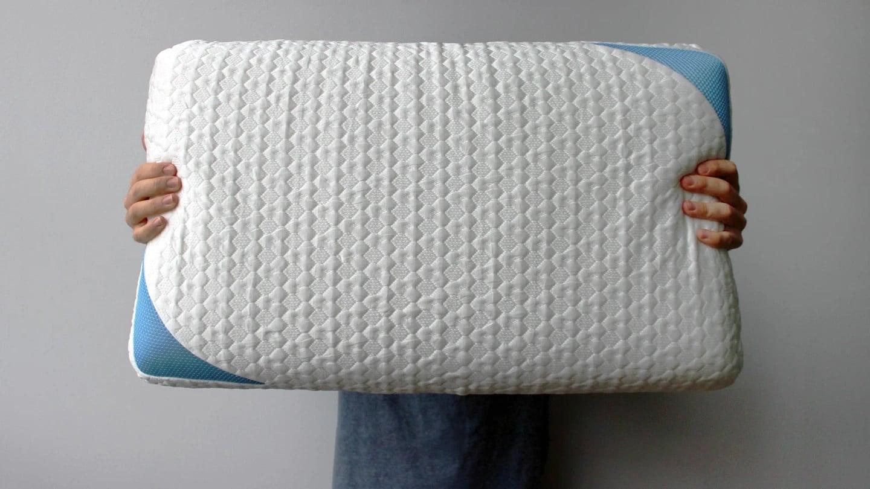 bear's cooler sleeping pillow