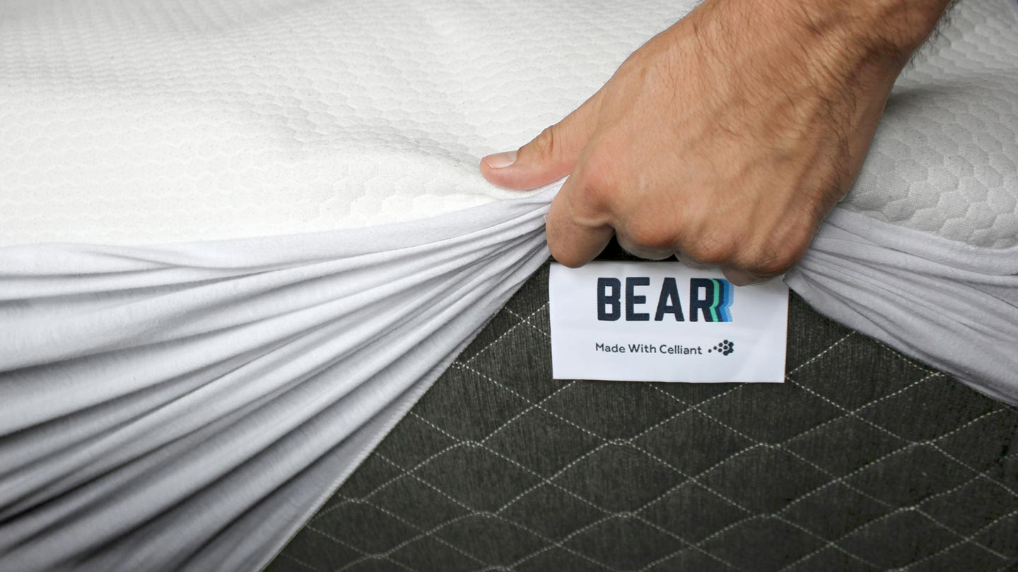 care instruction to keep your bed clean bear