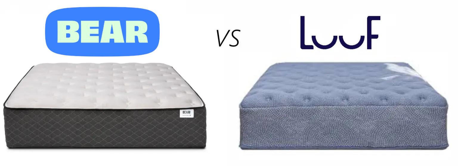 bear vs luuf