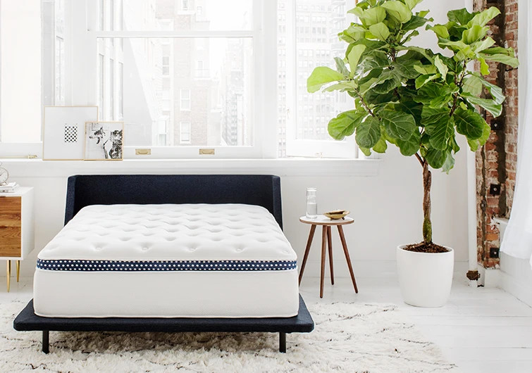is the winkbed better than the dreamcloud mattress