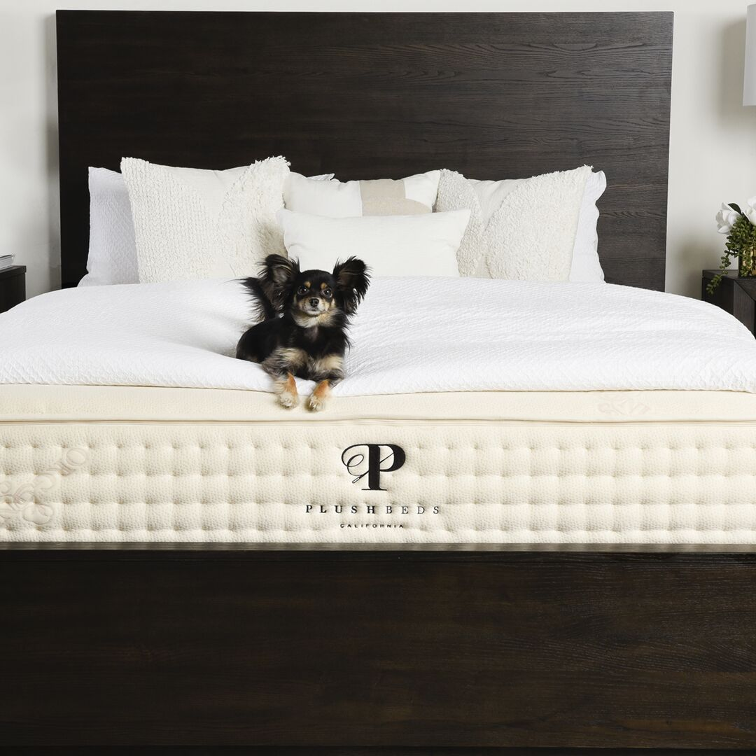 is the plushbeds mattresses any good