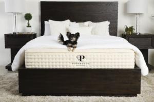 botanical bliss mattress review
