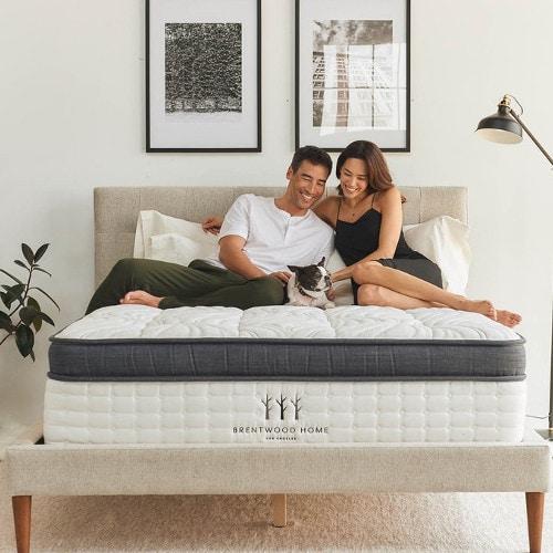 oceano best bed for sex