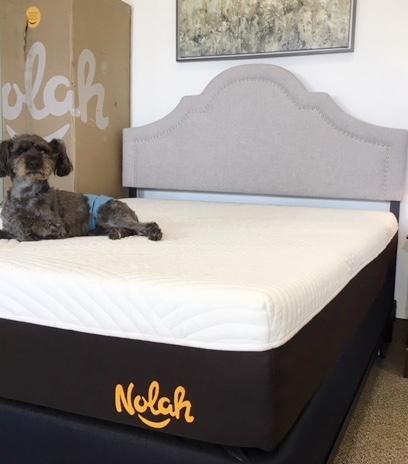 nolah bed better than the casper