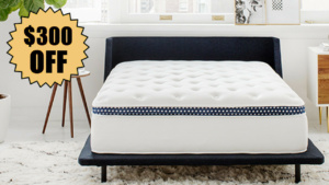 winkbed hybrid coupon