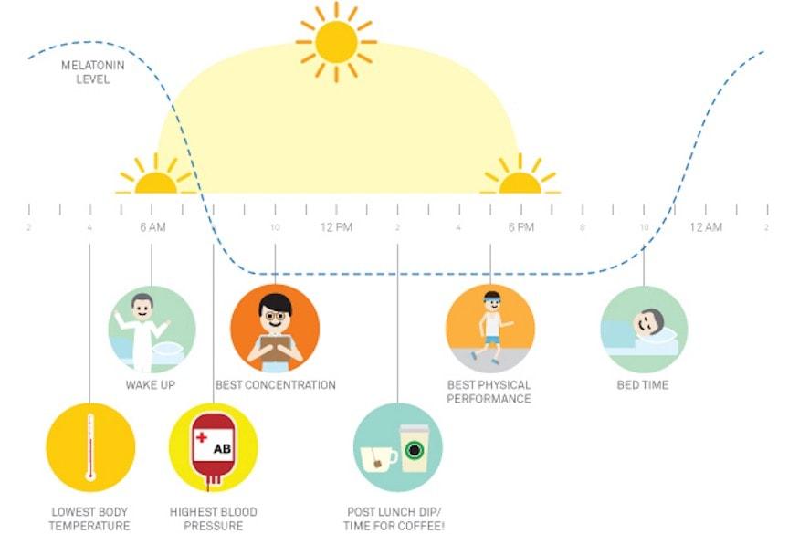 how to change sleep cycle