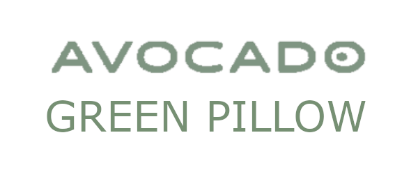 Avocado Organic Green Pillow Review