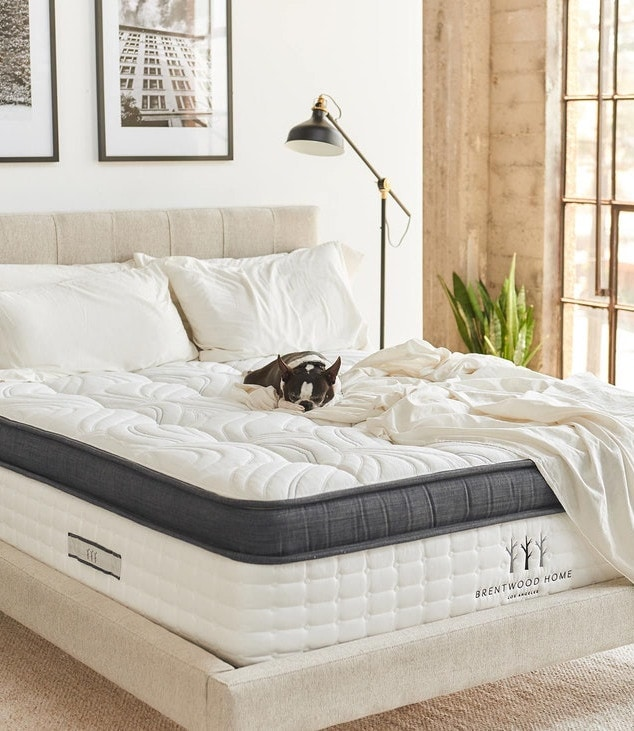 best luxury plush mattress