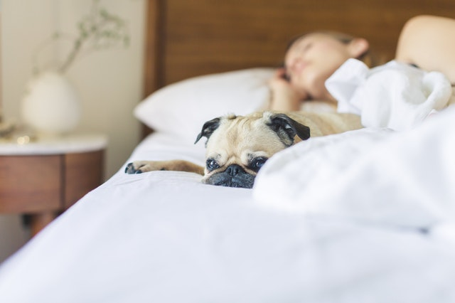 avoid taking naps