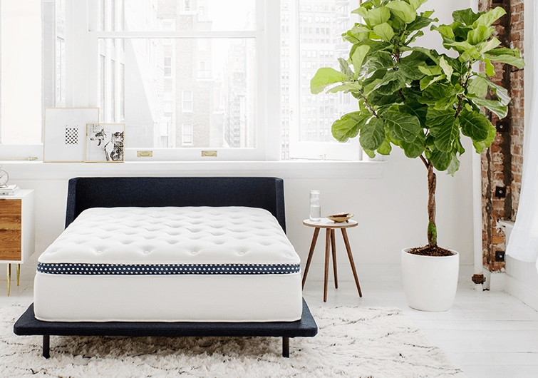 winkbeds mattress vs saatva HD bed comparison