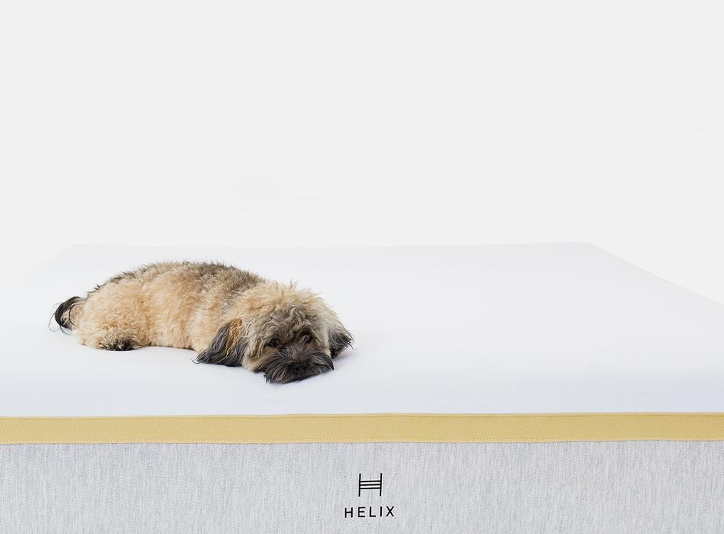 helix mattress for minimal motion transfer