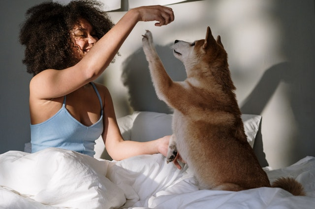 get a dog that will help wake you up