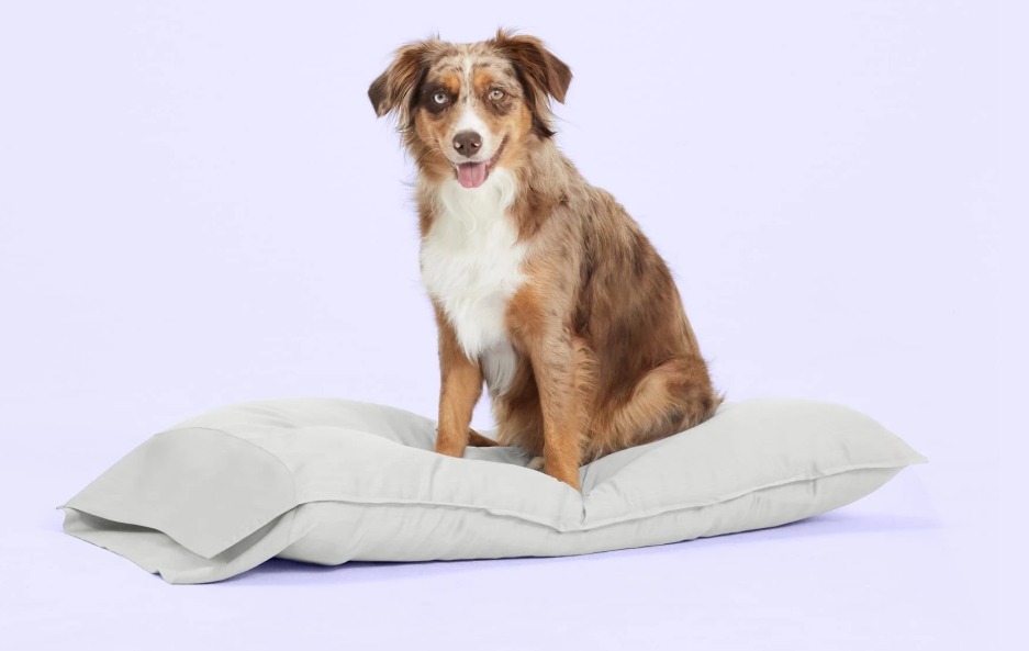 the buffy cloud pillow is pet and child safe