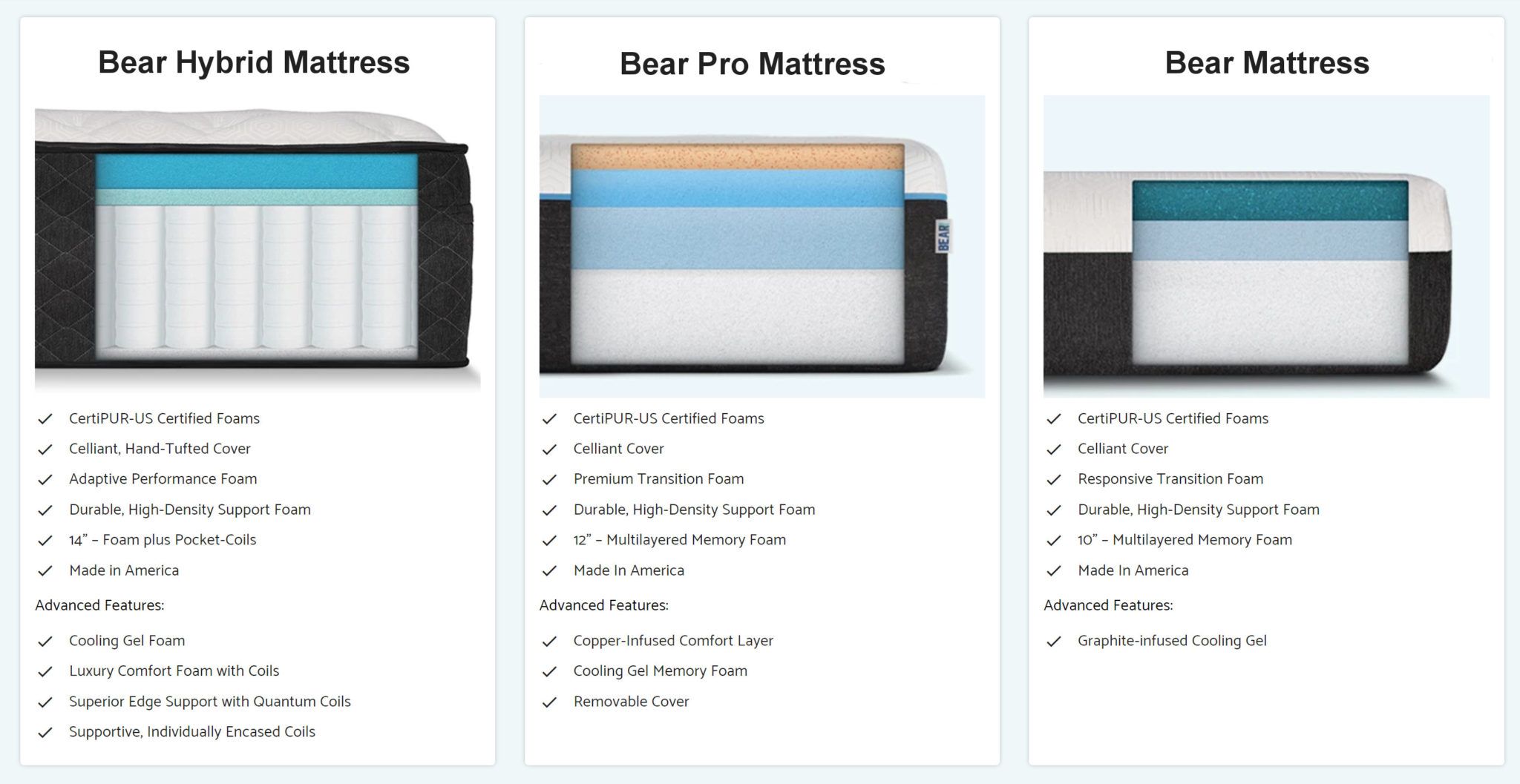 bear mattress models and options