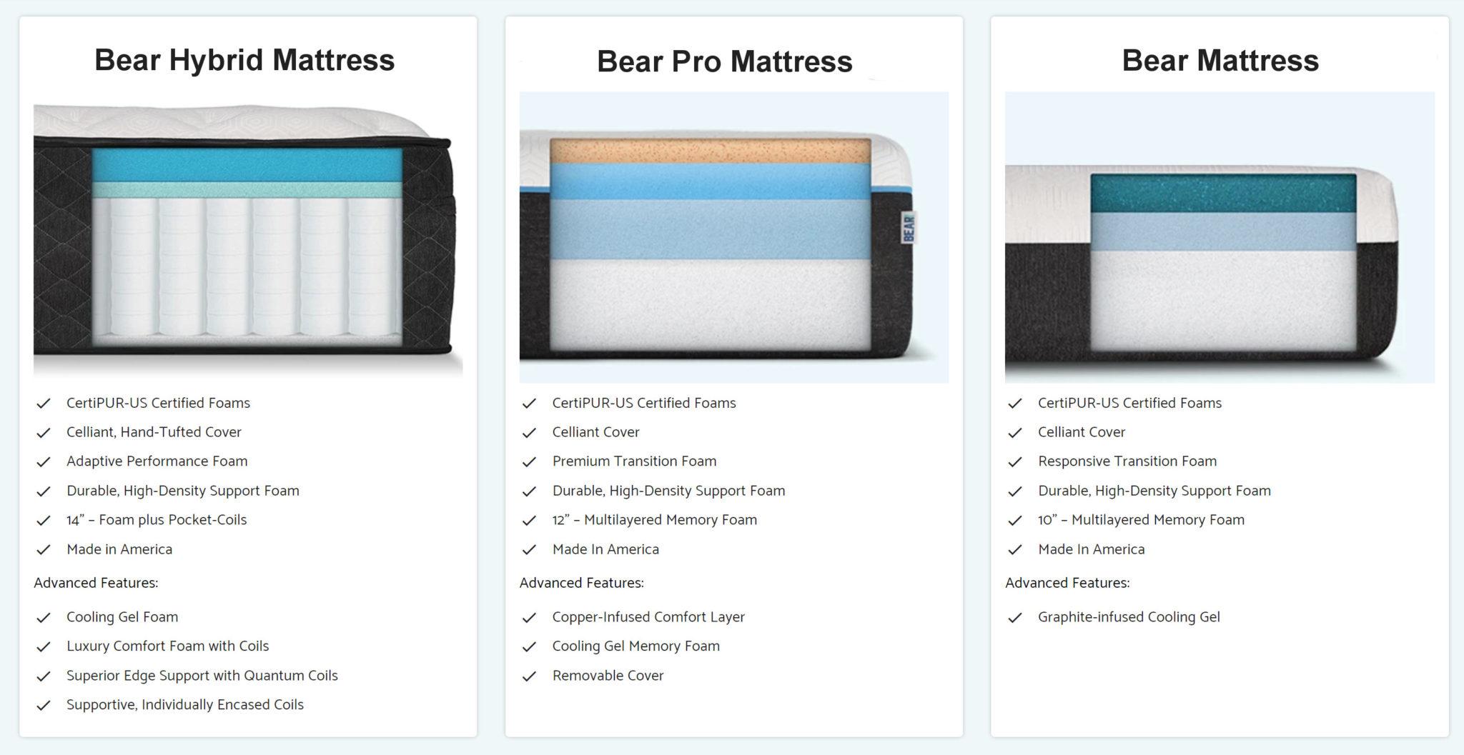 bear mattress models and options