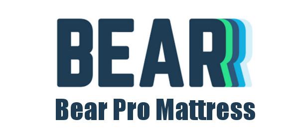 bear pro logo