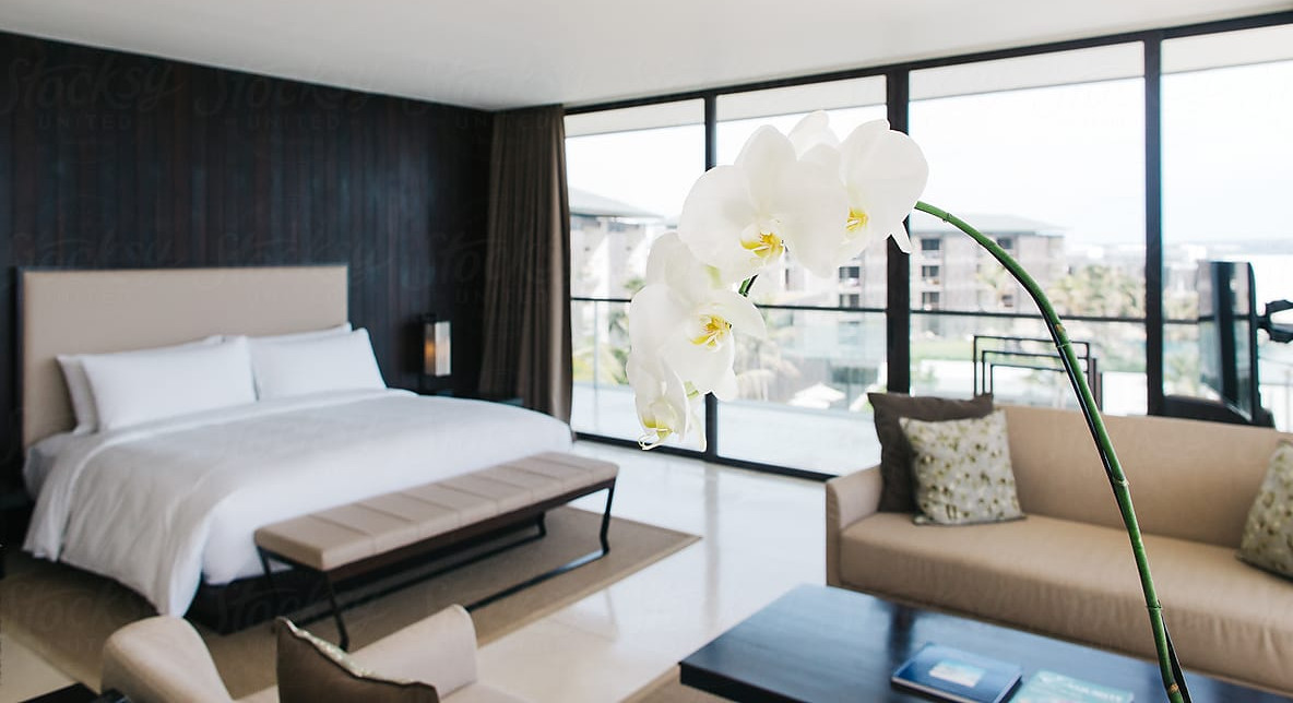 best bedroom flowers and plants