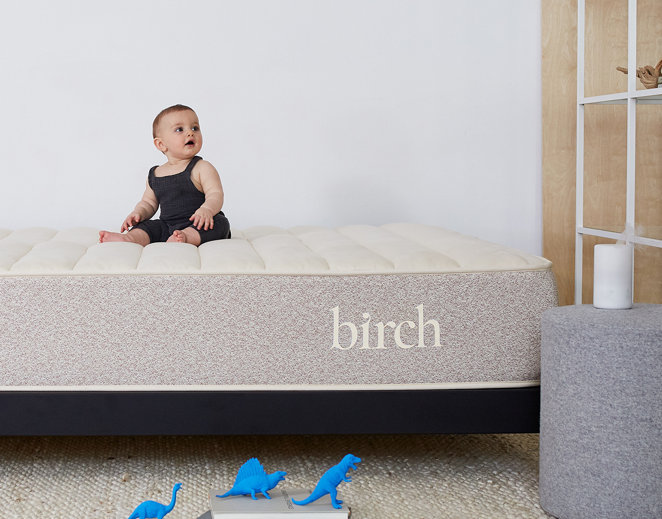 eco cloud mattress vs birch