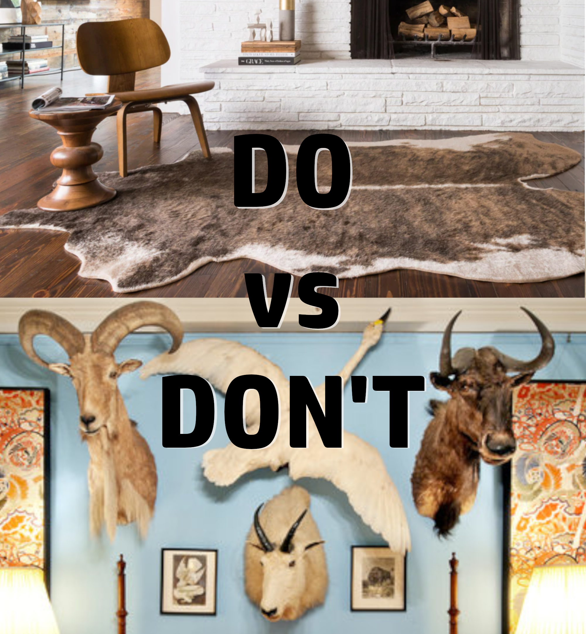 decorate without taxidermy