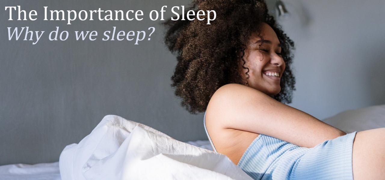 the importance of sleep why do we sleep?