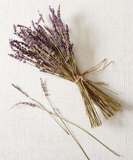 best bedroom fragrance lavender