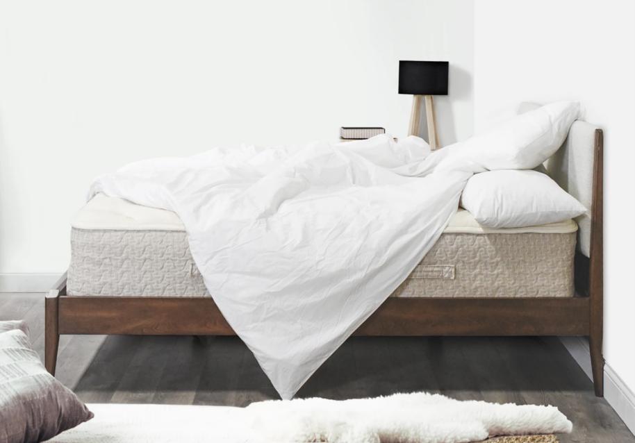 lytton sleep mattress review