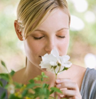 scented flowers for bedrooms