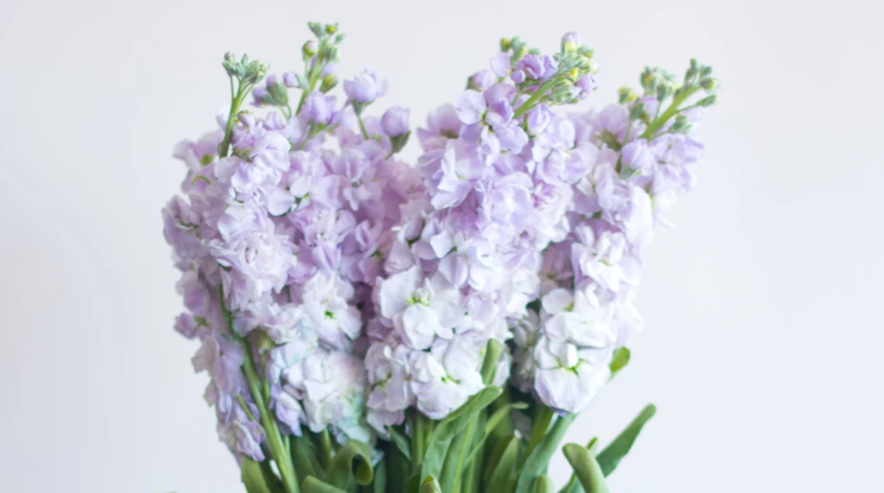 put flowers in your room to add scent