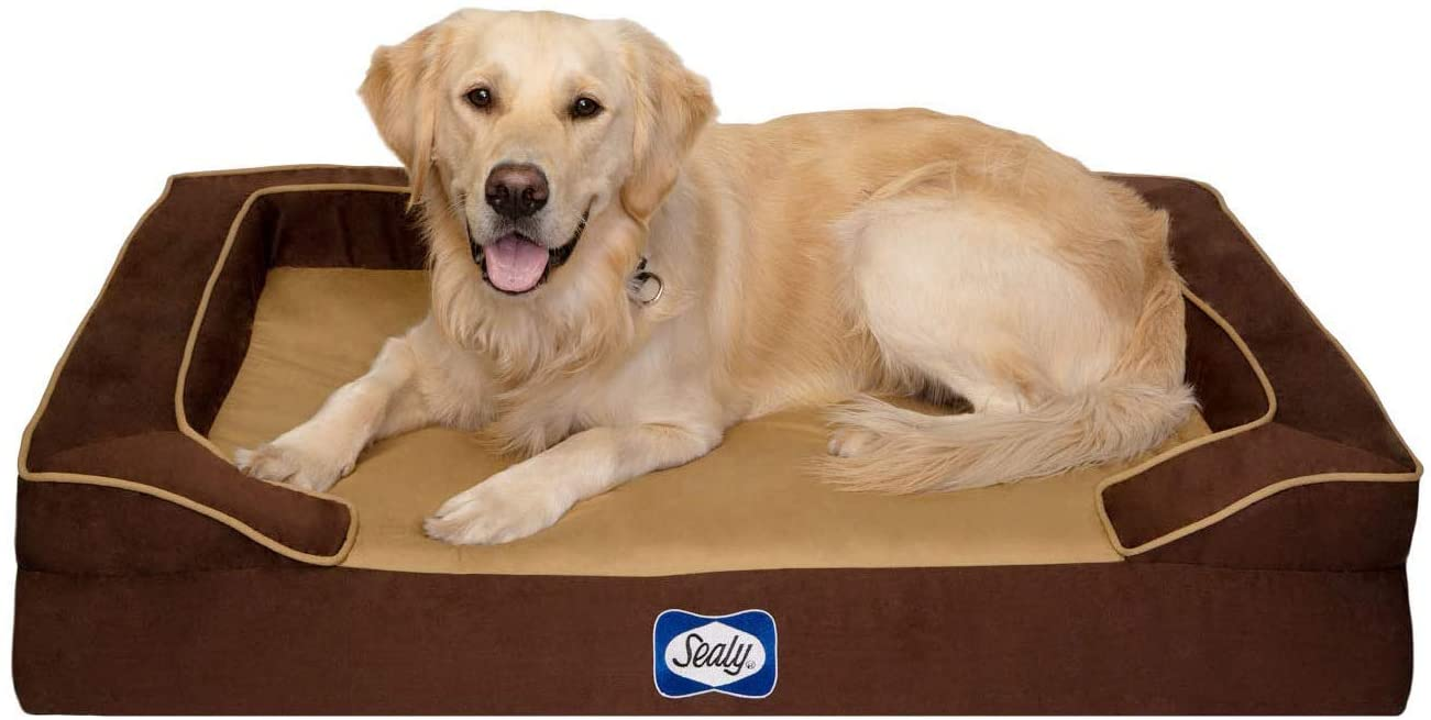 petbeds perfect for keeping your dog or cat comfortable