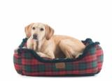 Pendelton Stylish Attractive Dog Beds